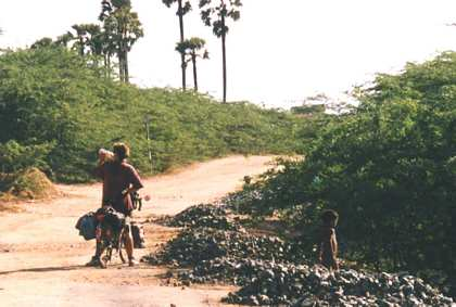 16 Apr - 7 May 1995: India, Tamil Nadu